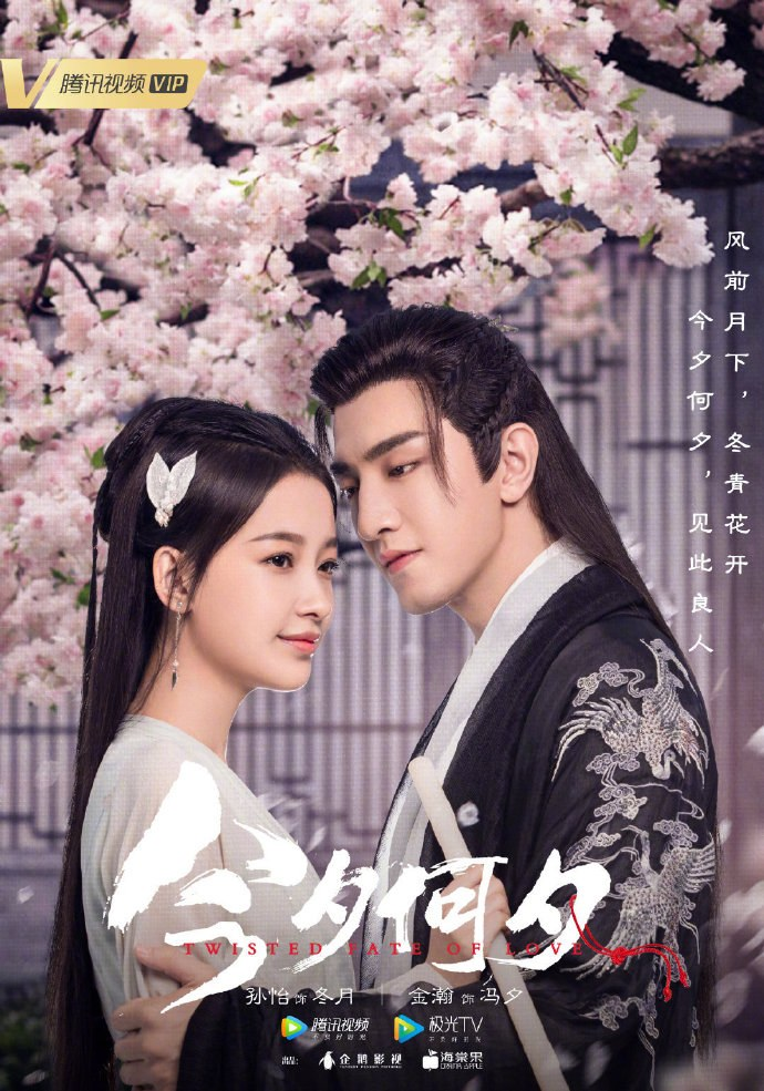 Affiche du drama chinois Twisted fate of love