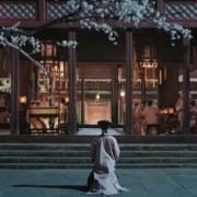 Yingluo - Story of Yanxi palace